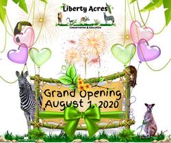 Grand Opening(4)