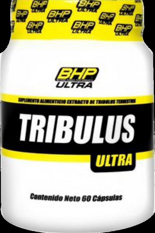 BHP TRIBULUS