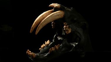 스밀로돈 (Smilodon)