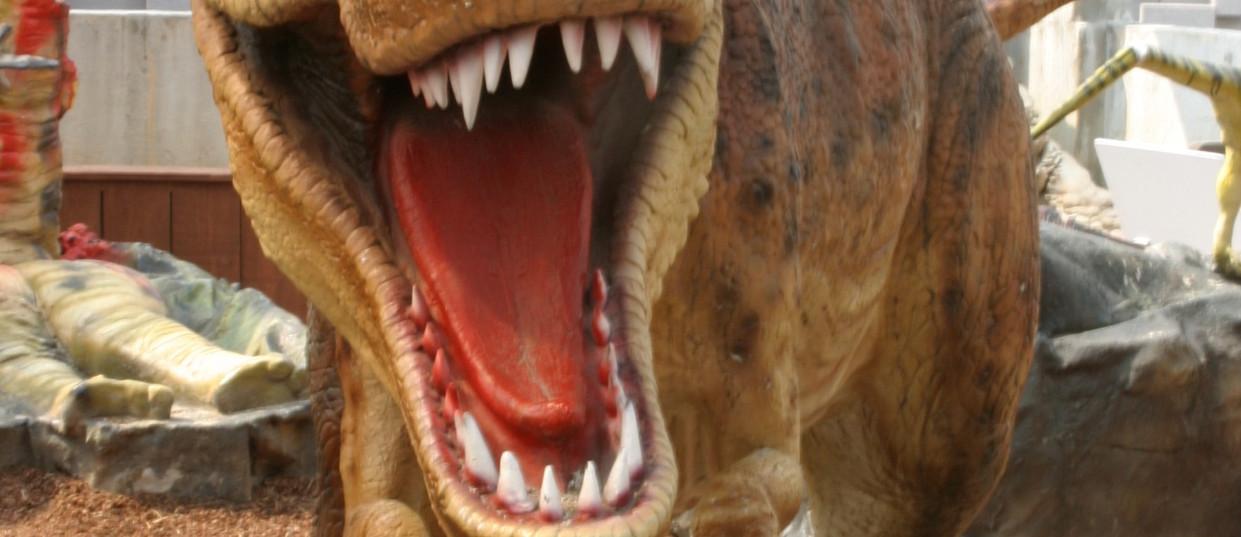 Tyranosaurus001_edited.jpg