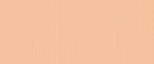 RUCHE_ORANGE_FOND_Plan de travail 1.jpg
