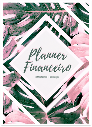 Planner Financeiro Folhas