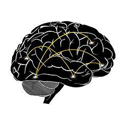 brain-circuits_NavyaThakkar.jpg