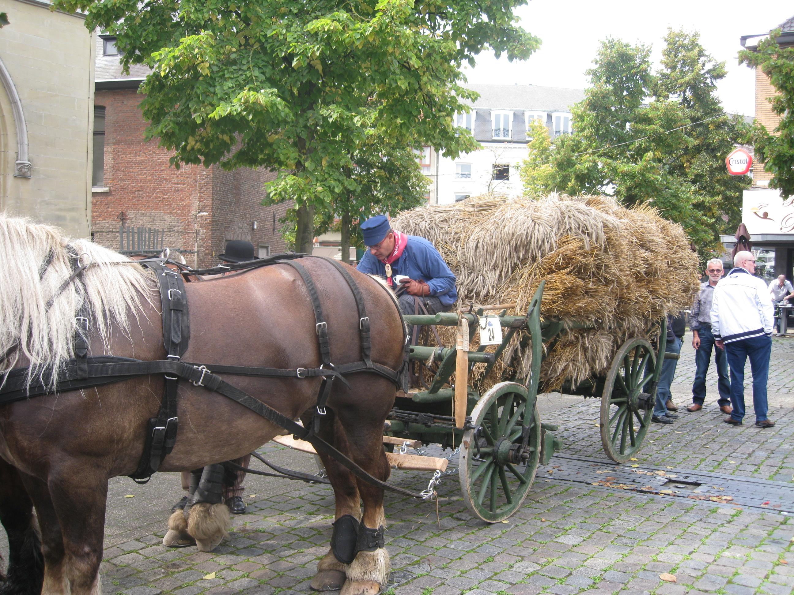 Koetsentocht Bree - Bocholt