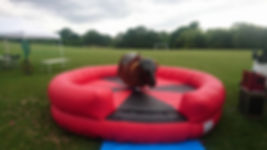 Bucking Bronco Kent