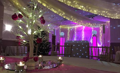 Wedding DJ Disco