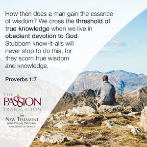 TPT_NewTestament_Proverbs1-7.jpg