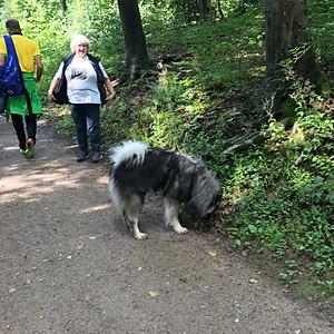 Spaziergang  in Hattingen