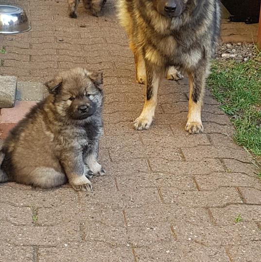 Baica und Mama