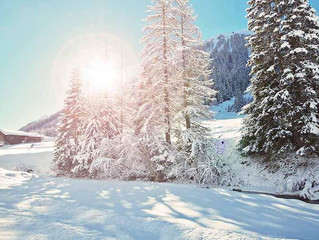 Webcams Schnee