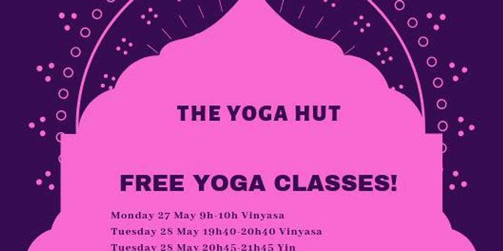 Dynamic Vinhasa followed by Yin Yoga