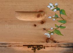 artwork on bee hive