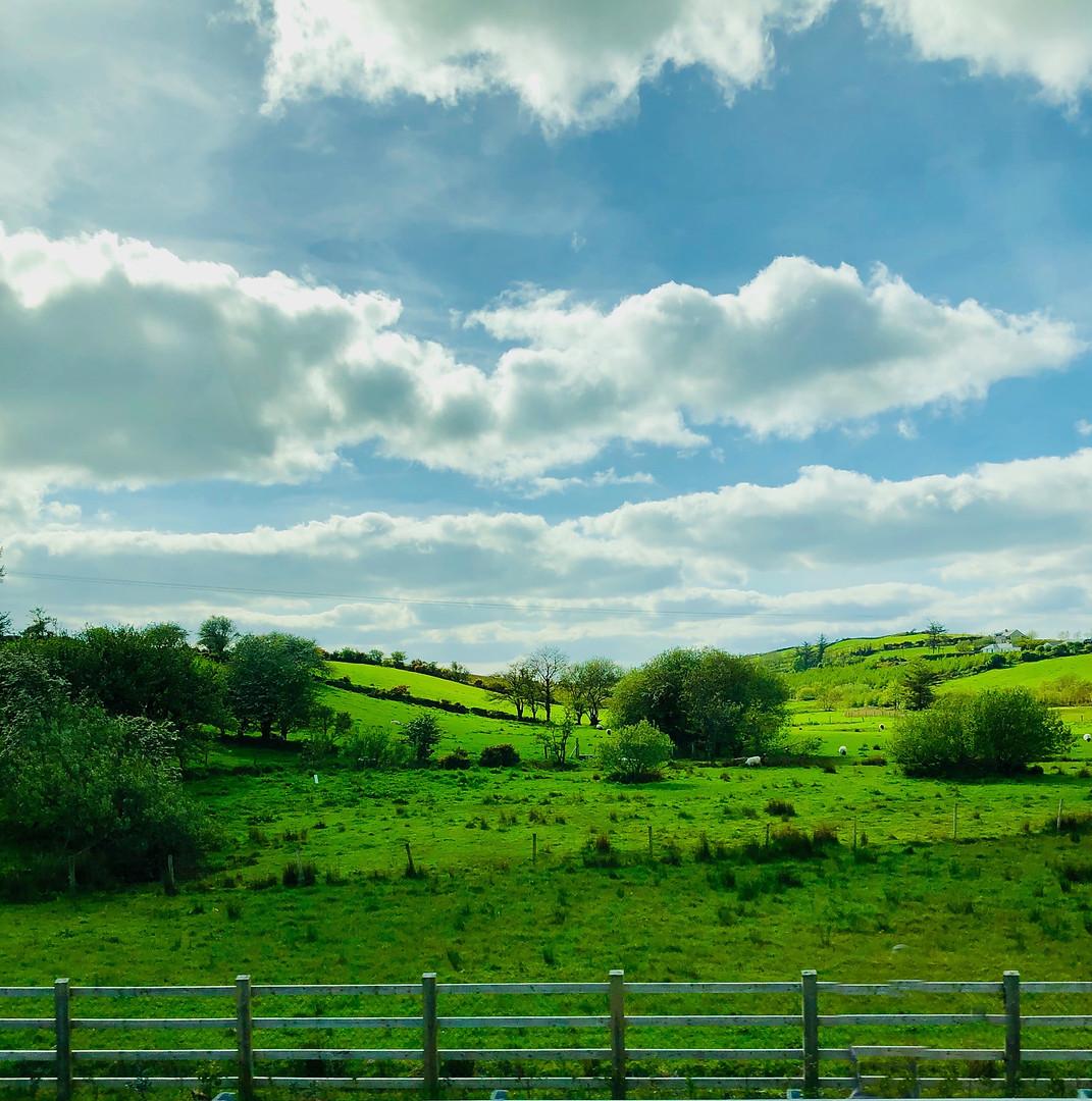 Ireland010.jpg