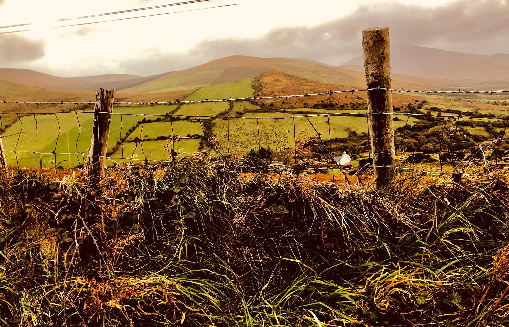 Ireland009.jpg