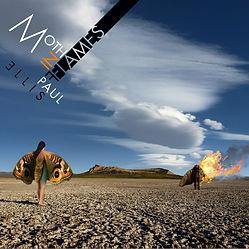 Moth In Flames.jpg