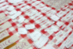 A red checked tablecloth, on top of it are lots of torn up pieces of paper with handwriting on them showing words such as crutch and acceptance
