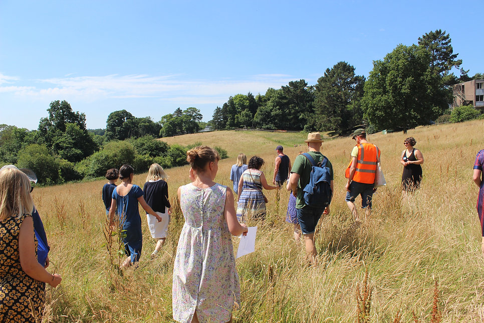 Image description: Nestled in the bright, sunny countryside, people clutching paper and bags wander through th field.