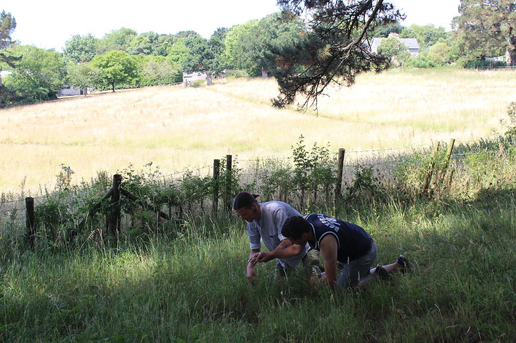 Image Description: A field, two people in the foreground crawl across the grass
