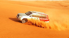 RT-desert-safari.jpg