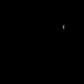 nancy logo.png