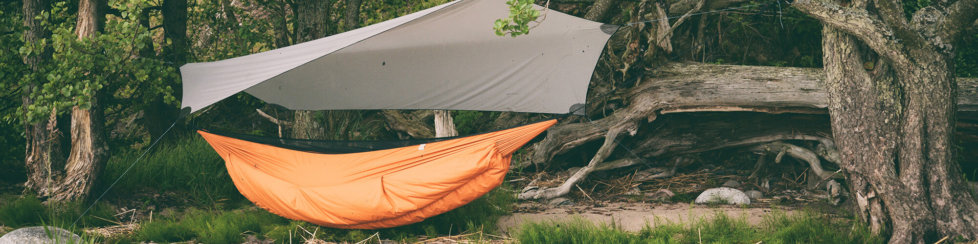 Hammock and tarp set