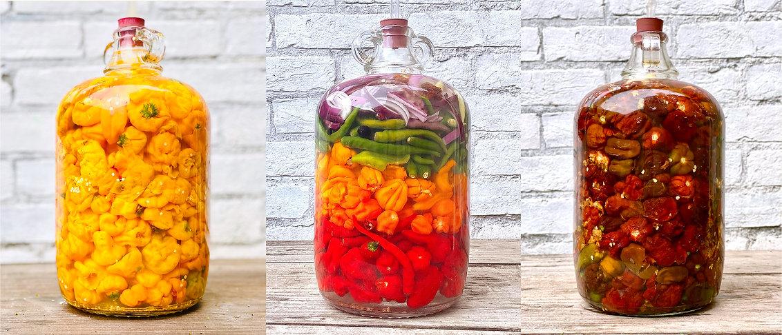 fermentedchillies.jpg