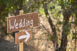 Wedding | Sarah & Thomas