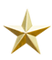 Golden five star review or rating_edited_edited.png