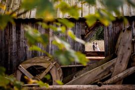 wdniuslubu dawid szarlej fotograf osiele