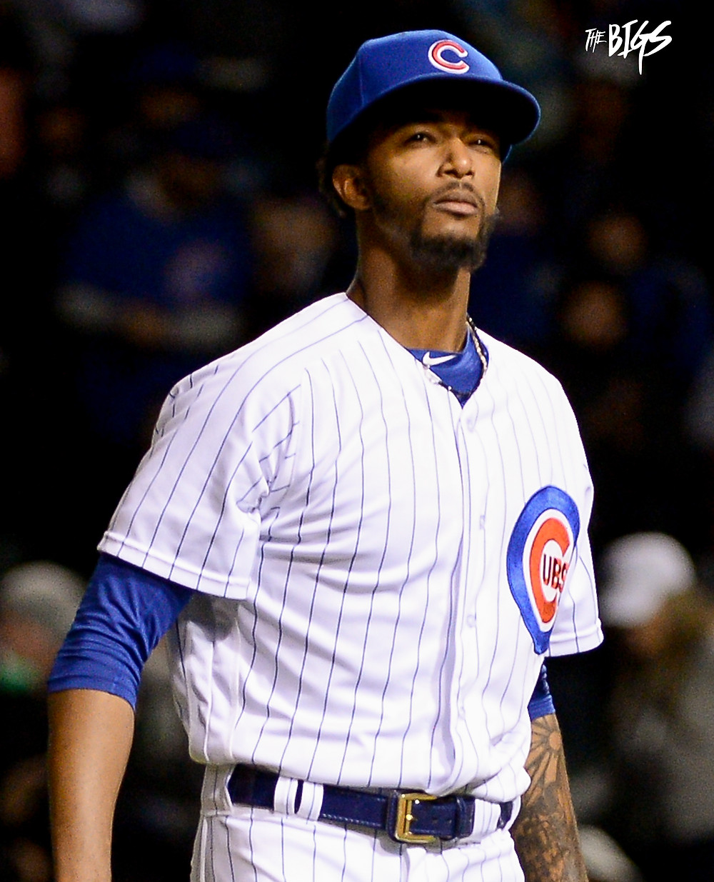 Carl Edwards Jr. knows what it's gonna take for the Cubs to win the NL central (John L. Alexander/The Bigs Visuals)