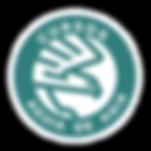 logo curso IDSC N1-02.png