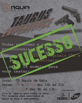 Post TE sucesso-01.png