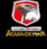 logo 1996.png