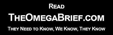 The Omega Brief - 2 x 1 Ad.jpg