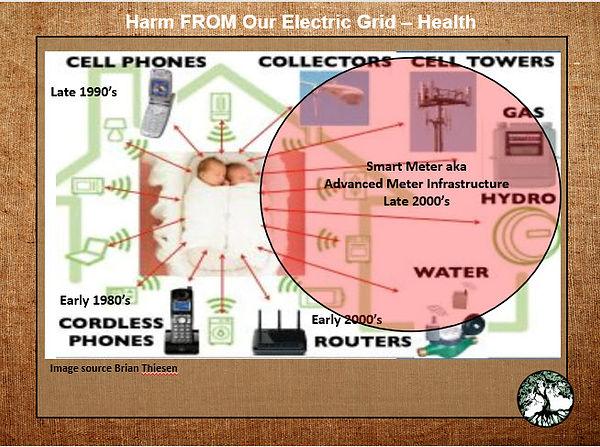 smart meter grid.jpg