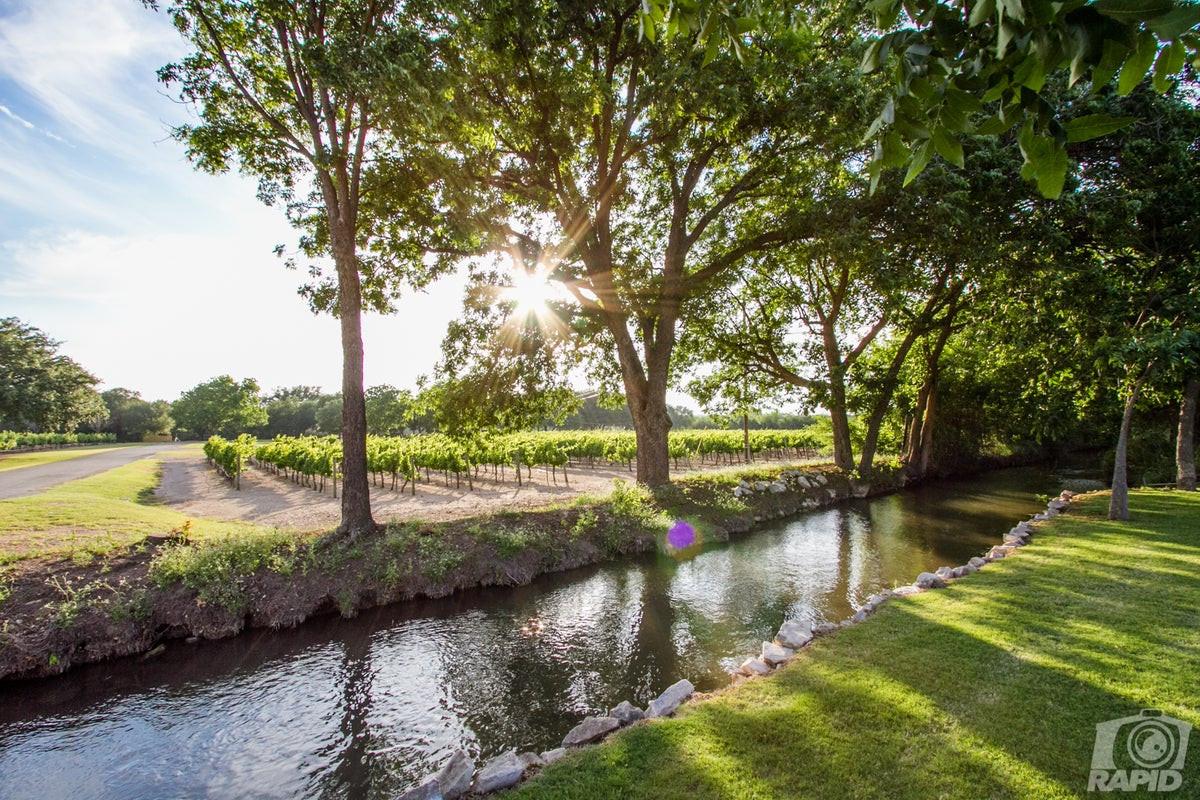 Vineyard Creek