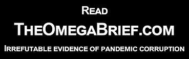 The Omega Brief - 2 x 1 Irrefutable.jpg