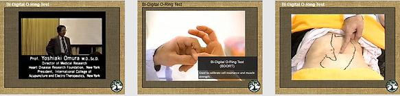 O-ring slides.jpg