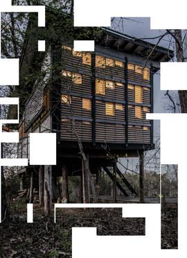 mcdowellespinosa_treehouse_03.jpg