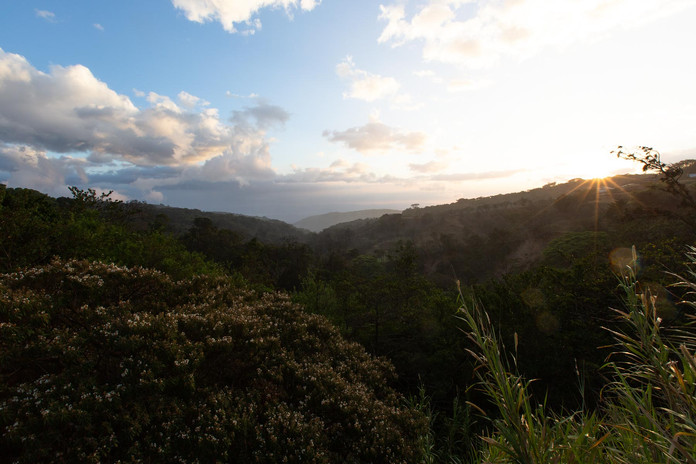 Monteverde, 2019