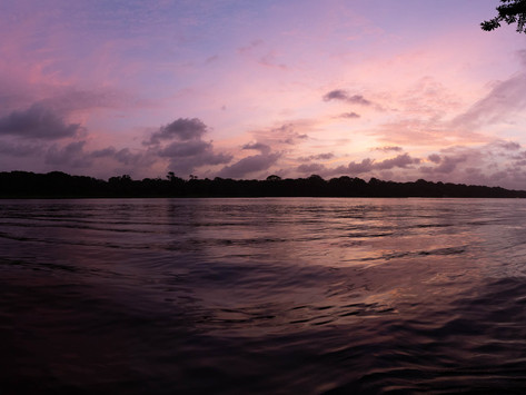 Tortuguero- A National Park between the sea and a river