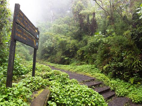 The Volcano Barva- a non touristic attraction