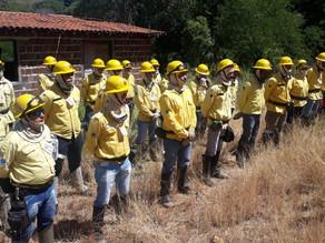 Prefeitura de Triunfo realiza curso de Brigadistas para Combate à Incêndios Florestais ministrado po