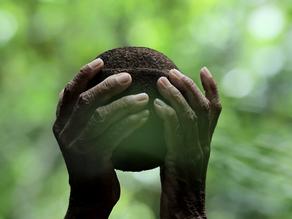 Festival de Cinema de Triunfo terá mostra de documentários ambientais