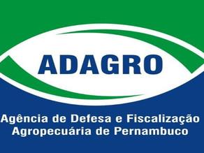 Adagro anuncia concurso com 140 vagas e salário de até R$ 4,8 mil