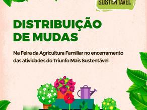 Encerramento do Triunfo + Sustentável acontece nesta próxima sexta-feira (28)
