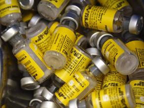 Casos de febre amarela quadruplicam em uma semana no Brasil