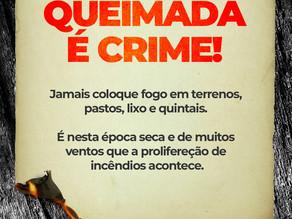Queimada é crime e gera sanções penais contra autor