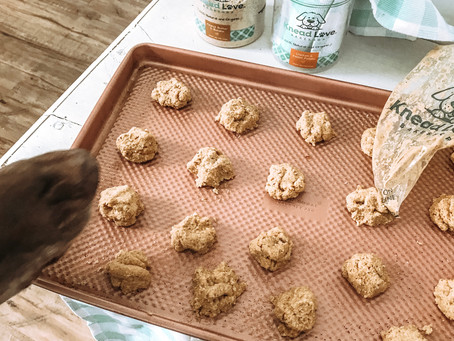 Worlds Easiest Bake-At-Home Dog Treats