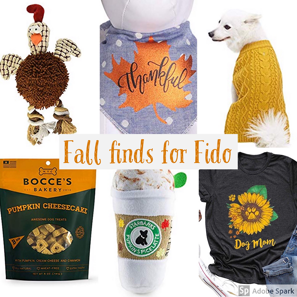 Fall finds for fido